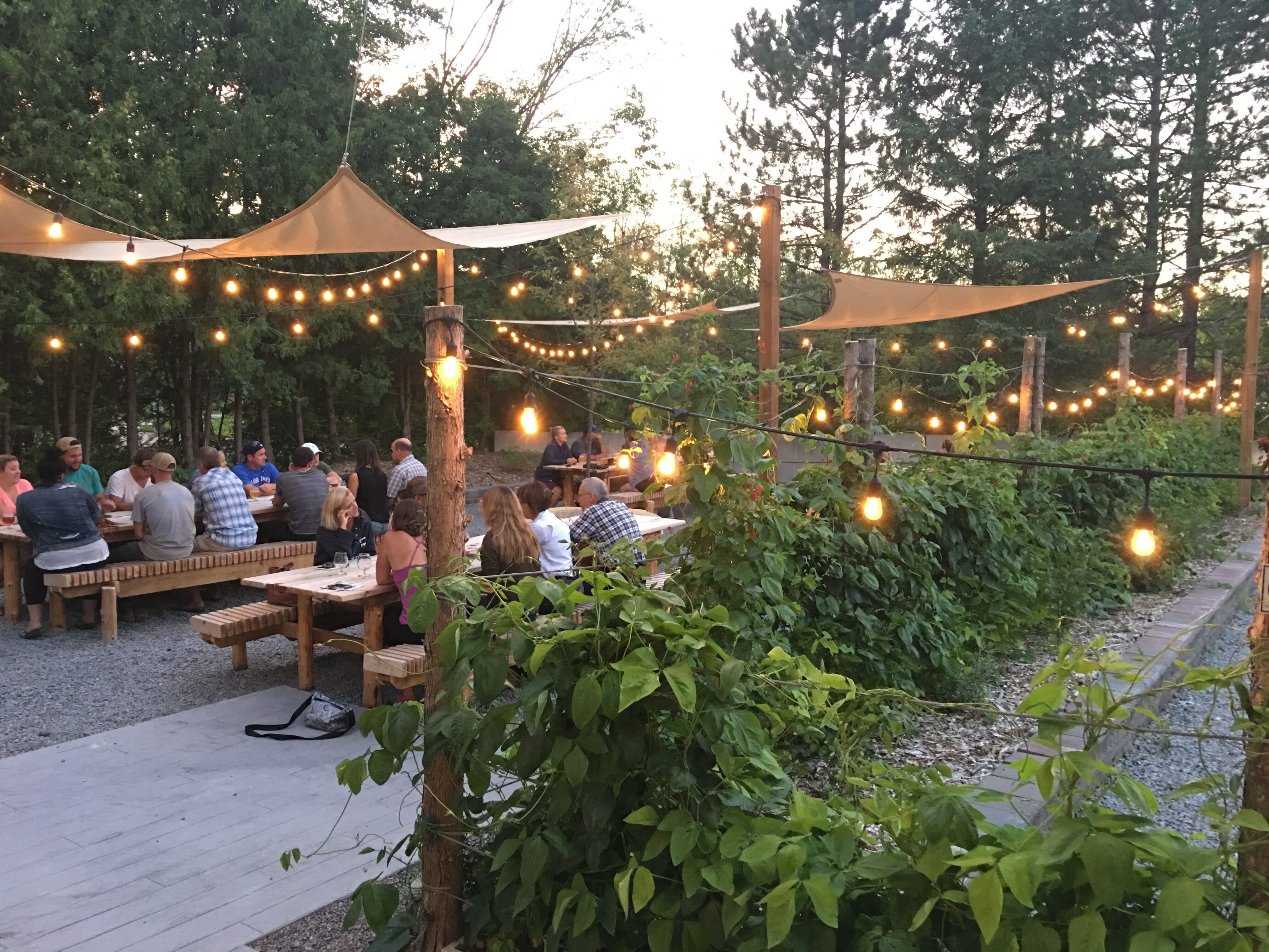 Our Beer Garden The Second Wedge Brewing Co